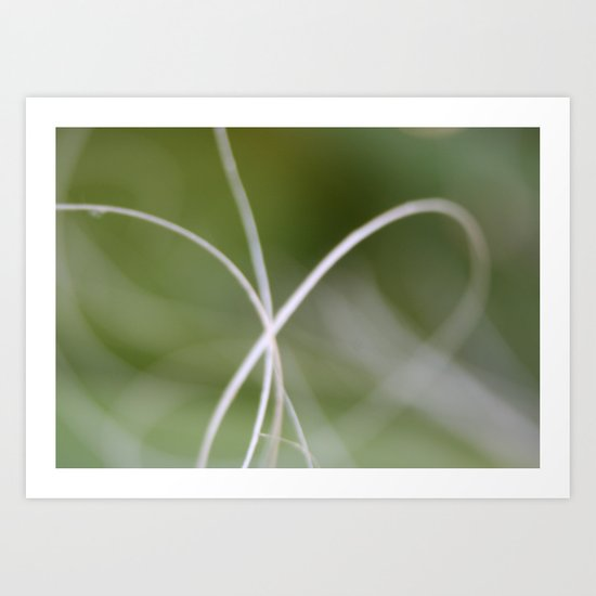 Macro of A Green Palm Tree Leaf  Fond Art Print