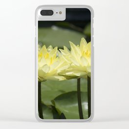 Longwood Gardens - Spring Series 294 Clear iPhone Case