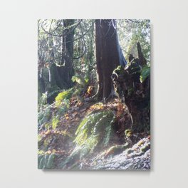 "forest ""troll"" in the snow #2 Metal Print"