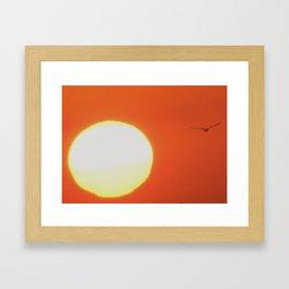 Flying next to the sun Framed Art Print