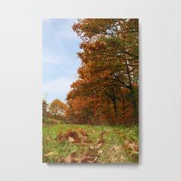 falling of leaves Metal Print
