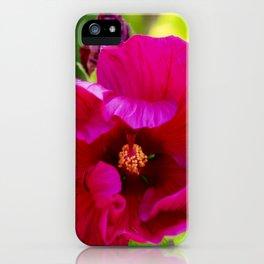 Jazzberry Jam Hibiscus iPhone Case