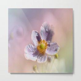 Beautiful Pastel Anemone Metal Print