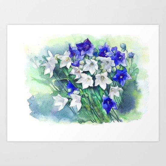 Campanula watercolor flowers, aquarelle bellflowers Art Print