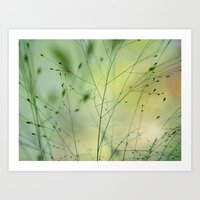grass Art Prints featuring Grass by Lena Weiss