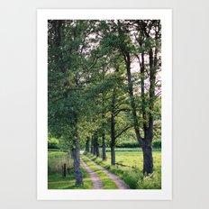 Sweden II Art Print