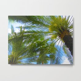 Dreamy Palms of Hawaii Metal Print