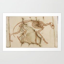 Moldy Cat Art Print