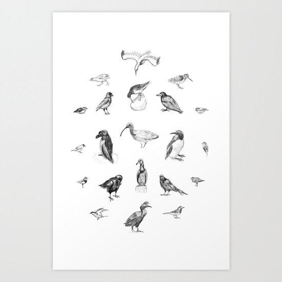 Manx Fauna - (British) Birds Art Print