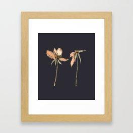 Toulhouse dark Framed Art Print