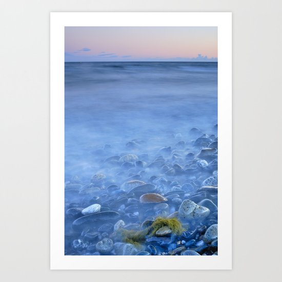 Green kelp on the rock Art Print