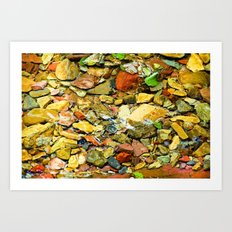A Colorful Creek, Glacier National Park Art Print