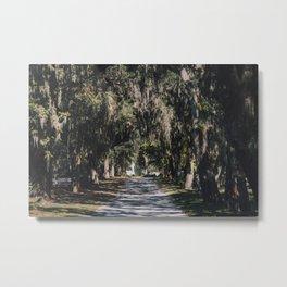 Bonaventure Cemetery - Savannah, Georgia II Metal Print