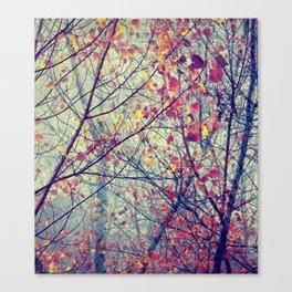trees misty morning Canvas Print