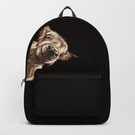 Sneaky Highland Cow in Black Backpack