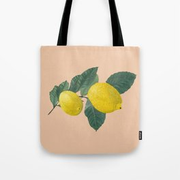 Oil painting of a lemon tree branch with two lemons, isolated on apricot background. Tote Bag