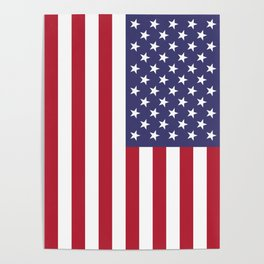 USA flag - Hi Def Authentic color & scale image Poster