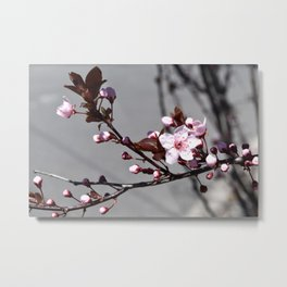 March Bloom Metal Print