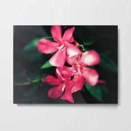 Pink Flowers Revamped Metal Print