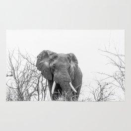 African Elephant on a Hill Rug