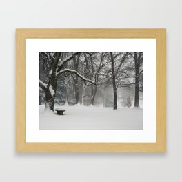 Stopping by woods Framed Art Print