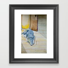 Sleeping little dog! Framed Art Print