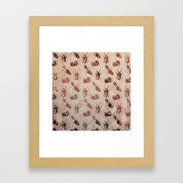 hot buggy mess persimmon brown Framed Art Print