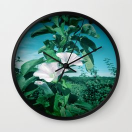 Thunbergia Grandiflora Wall Clock