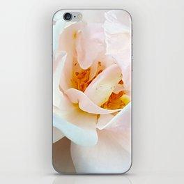 Finale - Last White Rose of the Summer iPhone Skin