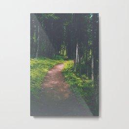 Bowman Lake Path Metal Print