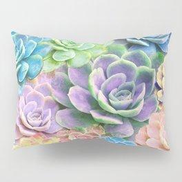 Rainbow Succulents Pillow Sham