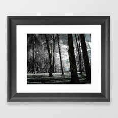 I Told You Dreams Were Real Framed Art Print