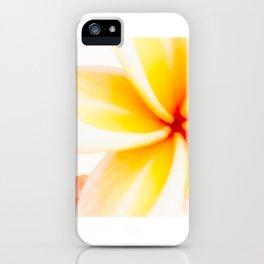 Dreamy Fangipani iPhone Case
