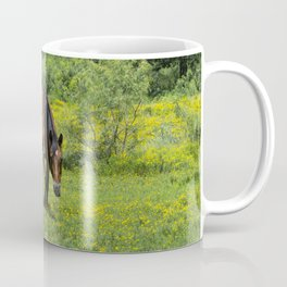 Young foal horse walking next to its mother in a field Coffee Mug