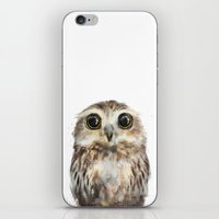 little iPhone & iPod Skins featuring Little Owl by Amy Hamilton