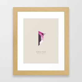 Purple Finch Framed Art Print