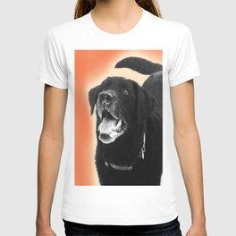 Labrador Happy 2 T-shirt