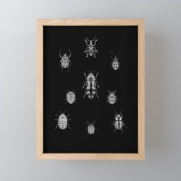 Beautiful Bugs Black Framed Mini Art Print