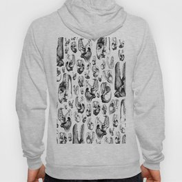 Carnivore HOT PINK & YELLOW / Animal skull illustrations from the top of the food chain Hoody