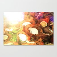 coconut wishes Canvas Prints featuring COCONUT by Laura James Cook