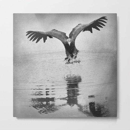 Fishing Eagle 2 Metal Print
