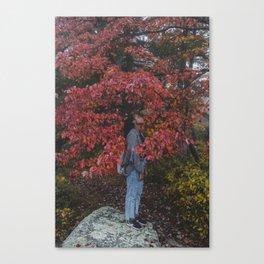 FliFli Canvas Print