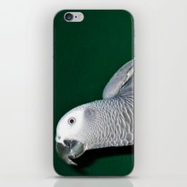 Parrot swing iPhone Skin