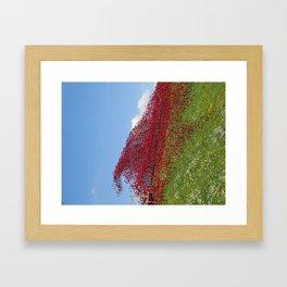 Fort Nelson Poppy Wave Framed Art Print