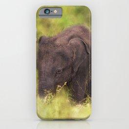 Elephant Baby iPhone Case
