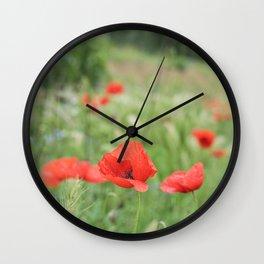 Poppies in Tuscany, Italy  Wall Clock