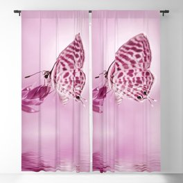 Butterfly 001 Blackout Curtain