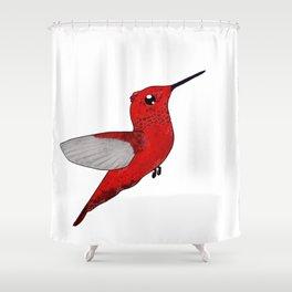 Noni's Hummingbird Shower Curtain