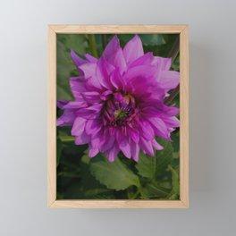 Fresh Framed Mini Art Print