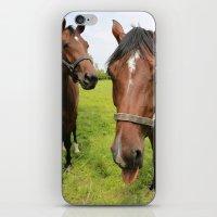 horses iPhone & iPod Skins featuring horses by Falko Follert Art-FF77